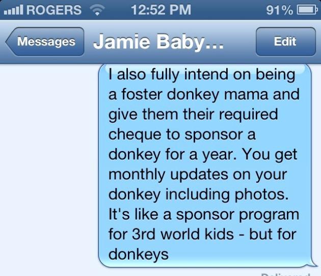 donkey-text